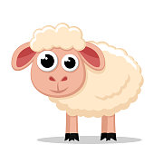 Cute sheep stands on a white background. Animal