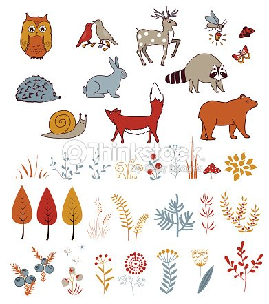Cute vector set with doodle forest plants and animals. Birds, bear, deer, raccoon, and fox. Kids autumn background.