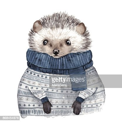 Cute watercolor hedgehog : stock vector