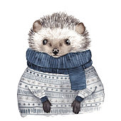 Cute watercolor hedgehog. Hand drawn vector illustration