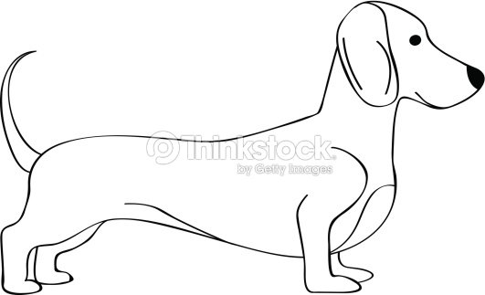 Line Drawing Dachshund : Dachshund line art vector thinkstock