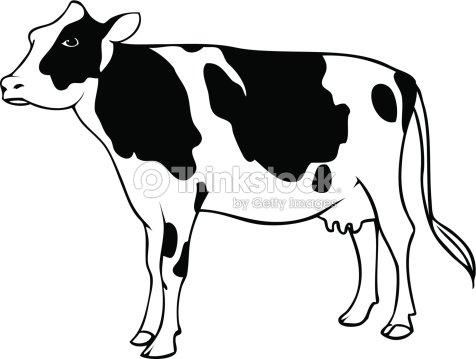 Dairy Cow Vector Art
