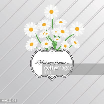 Daisy flowers and vintage label card : Vektorgrafik
