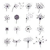 Dandelion Fluffy Flower and Seeds Silhouette Set Decoration Summer Plant. Vector illustration
