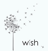 Dandelion vector. Wish. Simple minimalist style.