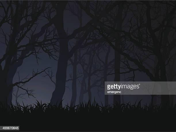 dark Nacht