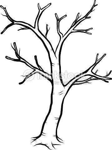 Dead Tree Vector Art  Thinkstock