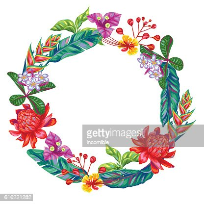 Decorative frame with Thailand flowers. Tropical multicolor plants, leaves and : Clipart vectoriel