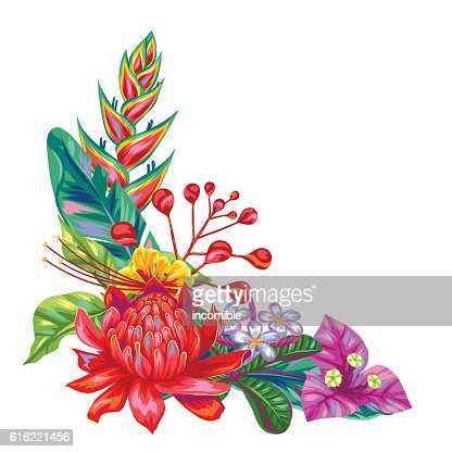 Decorative object with Thailand flowers. Tropical multicolor plants, leaves and : Vector Art