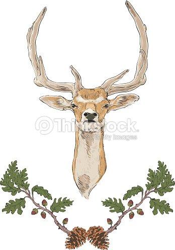 Deer Color Hojas De Navidad Dibujo Oak Arte vectorial   Thinkstock