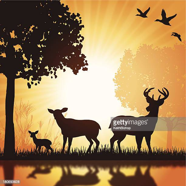 Deer Family - Buck, Doe, Fawn Silhouette Background