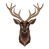 Deer head stylized in style. Tribal tattoo design. Vector illustration.