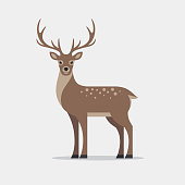 Deer illustration in flat style. Reindeer icon.