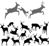 Deer silhouettes including fawn, doe bucks and stags in various poses. Includes family group of stag doe and fawn running and jumping together
