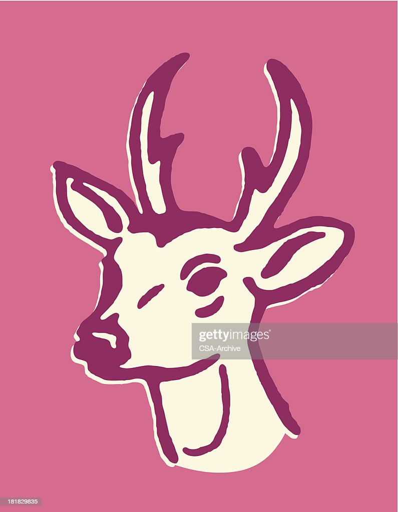 Deer With Small Antlers Vector Art | Getty Images