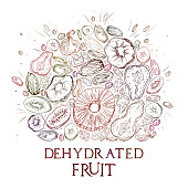 Dehydrated fruit round shape pattern in engraved style with colored elements and lettering. Fully editable color vector illustrations for background or sticker.