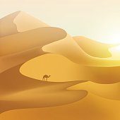 Desert dunes sunset landscape. Vector nature illustration