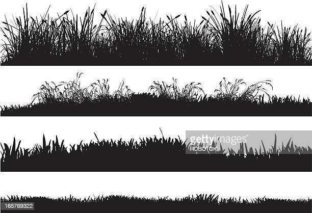 Detailed silhouettes of different grass floors