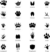 Different footprints of birds and animals. Vector monochrome pictures on white background. Animal footprint track, black silhouette footprints illustration