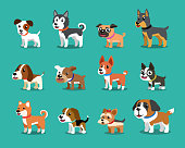 Different type of cartoon dogs for design.