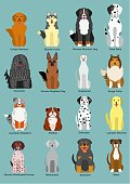 Set of large~middle dogs breed.