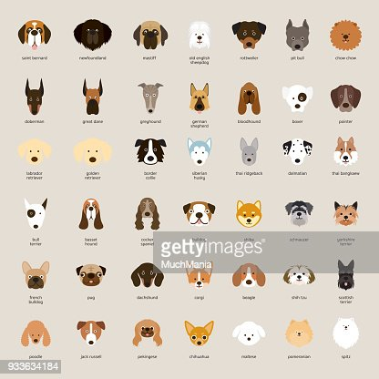 Dog Breeds, Head Set : stock vector