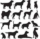 Set of vector dog silhouettes of different breeds:
