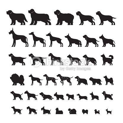 Dog Breeds, Silhouette Set : arte vetorial