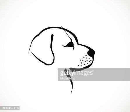 how to draw a labrador face