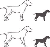 Illustration of a dog in different poses isolated on white background.