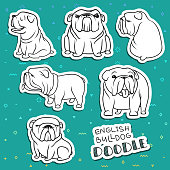 Dogs characters. Doodle dog. Sticker dog english bulldog. Funny character . Funny dogs. Funny animals. Dog isolated. Dogs set