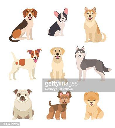 犬のコレクションです。 : ベクトルアート