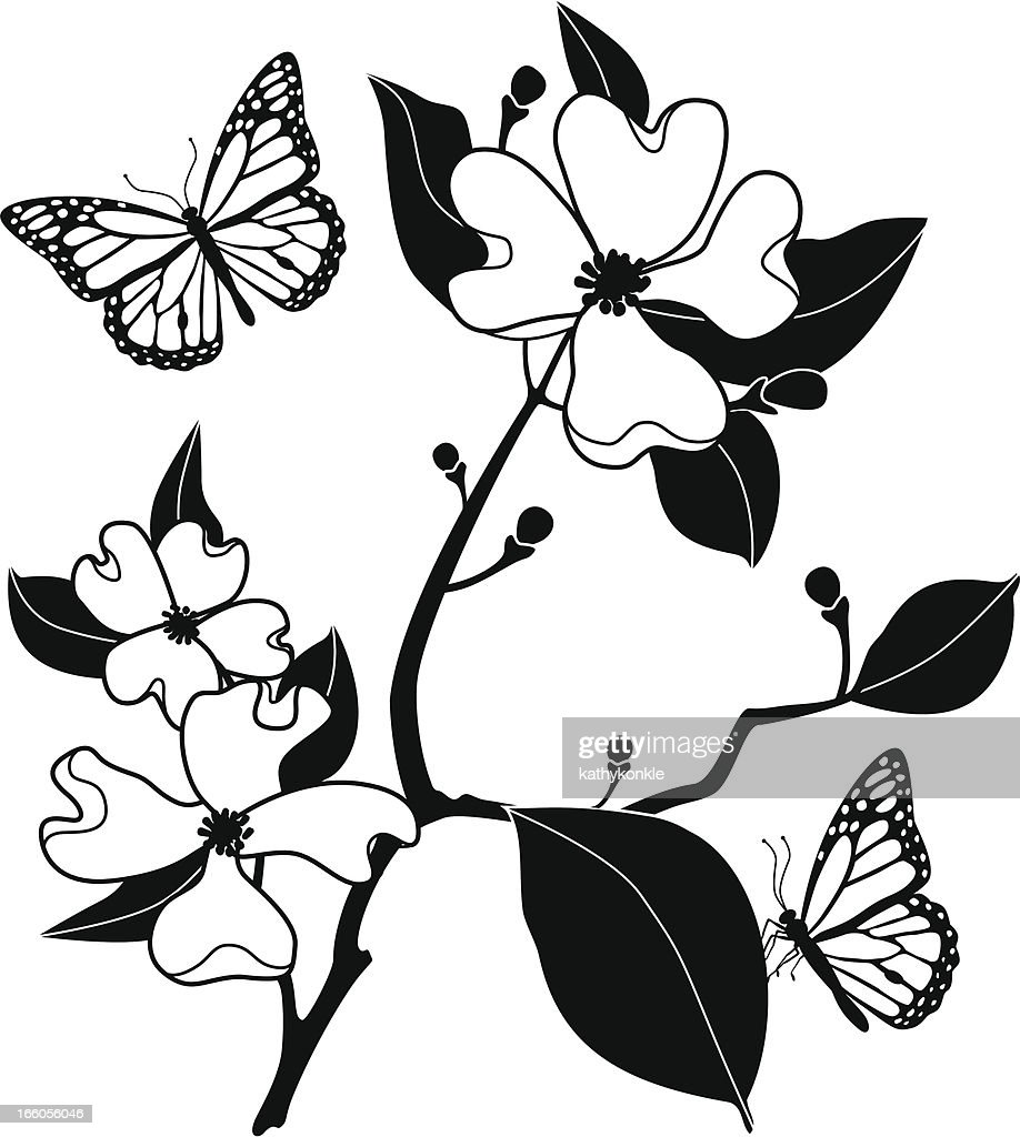 dogwood and monarch butterflies vector art getty images