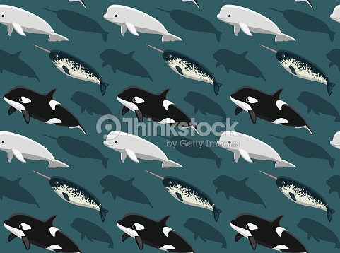 Dolphins Wallpaper 2 Vector Art