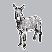 Cute farm animal in engraving style. Vector illustration together with a large raster image.