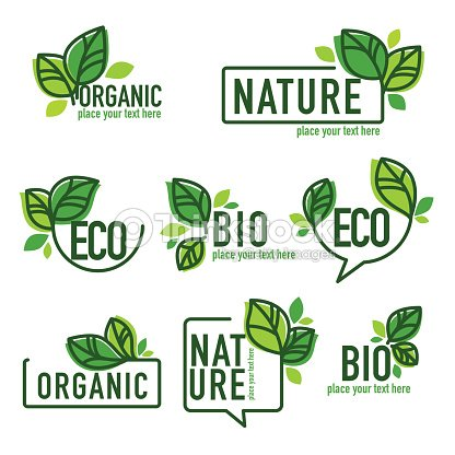doodle organic leaves emblems : stock vector