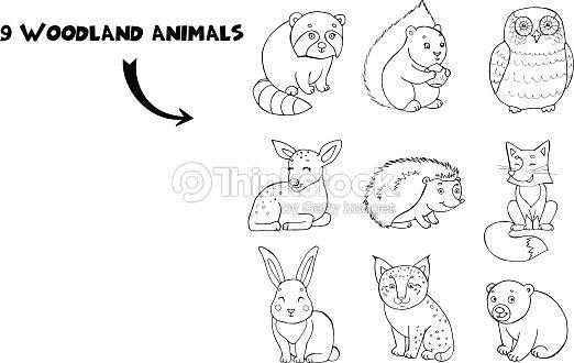 Doodle Conjunto De Dibujos Animados Cute Color Animales Con Ardilla ...