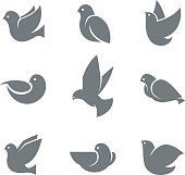 Dove grey silhouette, symbol of peace on earth, love or mail messenger concept, gentle, sweet and loving bird. Vector flat style illustration isolated on white background