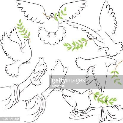 Dove of Peace : Vector Art