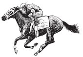 vectorial representation of an ink drawing of a horse and rider