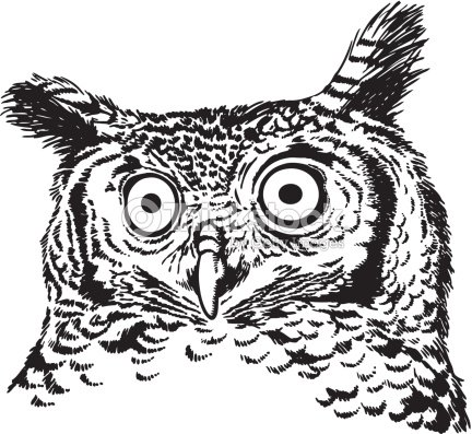 Drawing of a surprised looking owl vector art thinkstock for Die hard tattoo albany oregon