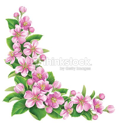 Drawing of pink flowers and green leaves on white background vector drawing of pink flowers and green leaves on white background vector art mightylinksfo