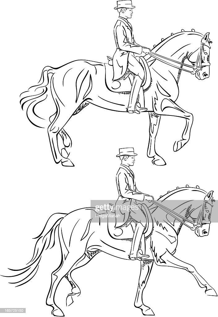 Ausmalbilder Ostwind: Dressage Rider Line Art Vector Art