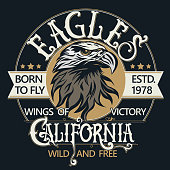Eagle head logo for t-shirt, Hawk mascot Sport wear typography emblem graphic, athletic apparel stamp. Portrait of a bald eagle. Vector