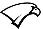 Eagle head sign. Design element for sport team emblem, badge, mascot. Vector illustration