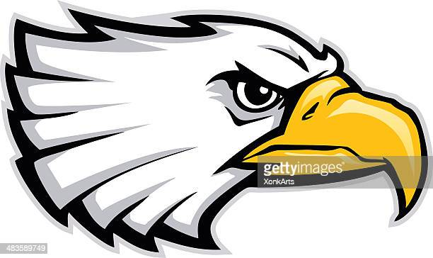 Eagle Head Stylized