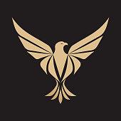 Eagle, Bird, Animal, Wildlife, Head