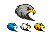 Different colors eagle logo for sports team