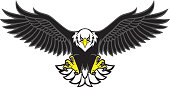 vector of eagle mascot spread the wings