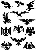 Heraldic eagle and hawk, falcon badge. Aquila with wide opened wing tattoo, bird as insignia of power and freedom, american patriotism symbol. Retro heraldry or historical culture, military or war the
